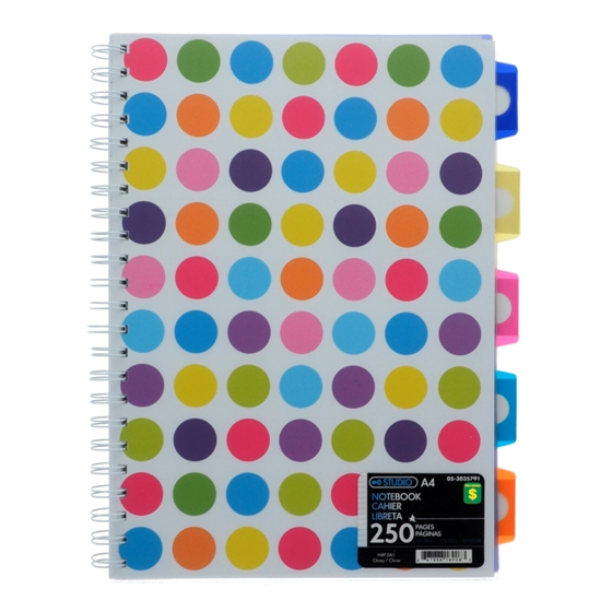 250 Page A4 Size Notebook