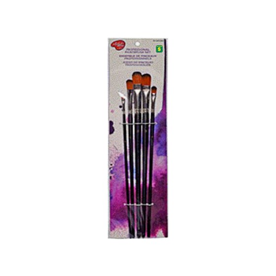 5PK Assorted Long Painting brushes